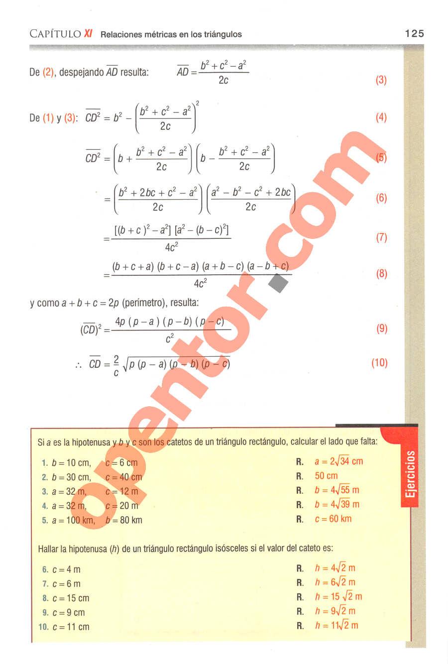 Geometría y Trigonometría de Baldor - Página 125