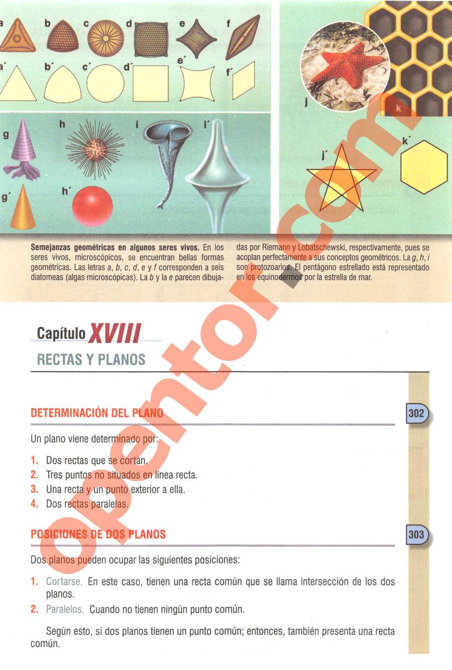 Geometría y Trigonometría de Baldor - Página 233